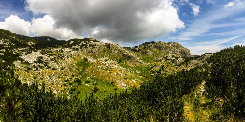 Hiking path Plocno / Veliki Vilinac