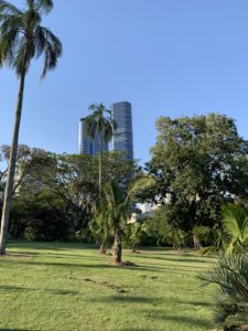 Gardens in the city