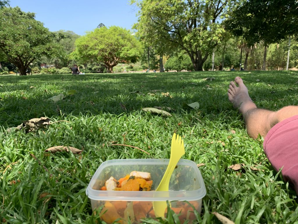 Lunch in the nearby botanic gardens